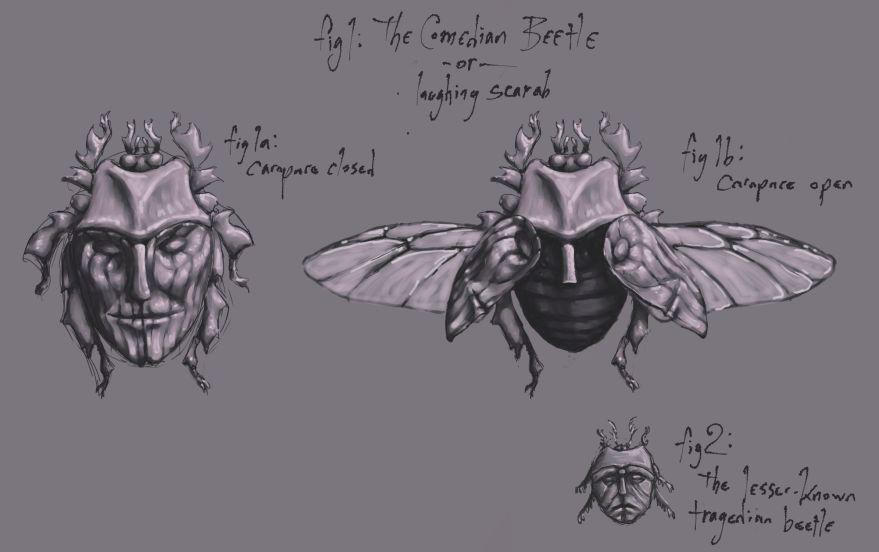 Comedian Beetle