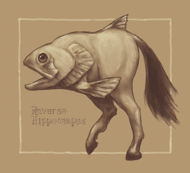 Reverse Hippocampus
